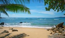 狂放的离开的海滩 普吉岛泰国 免版税库存图片