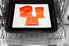 狂放的红鲑鱼片断用干红色干胡椒和海盐涂 图库摄影