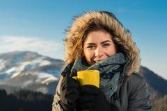 狂放的自然和冬天寒冷 免版税库存图片