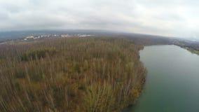 狂放的自然风景,绿色旅游业,自然环境,森林空中射击  股票视频