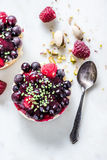 狂放的莓果乳酪蛋糕 库存图片