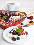 狂放的莓果和薄菏Ð'unch  图库摄影
