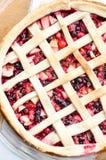 狂放的莓果饼 免版税库存图片