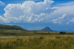狂放的蒙大拿草原 免版税图库摄影