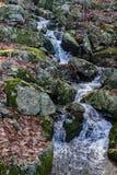 狂放的蓝岭山脉瀑布 免版税库存图片