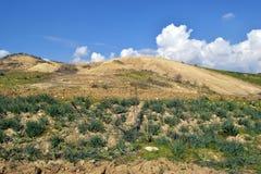 狂放的风景在塞浦路斯 免版税库存图片