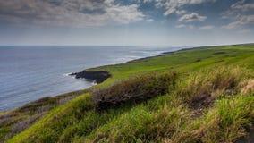 狂放的绿色海岸 免版税图库摄影
