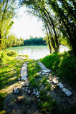 狂放的Brenta河 免版税库存图片