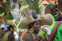 狂欢节在瓜德罗普,加勒比 免版税库存图片
