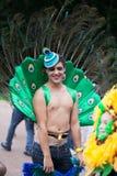 狂欢节游行悉尼2014年 免版税库存照片