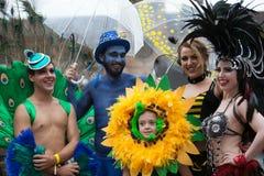 狂欢节游行悉尼2014年 库存照片
