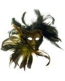 狂欢节用羽毛装饰屏蔽 免版税库存照片