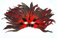 狂欢节用羽毛装饰屏蔽 图库摄影