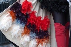 狂欢节的全身羽毛 图库摄影