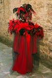 狂欢节红色面具画象  库存照片