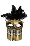 狂欢节面具 库存图片