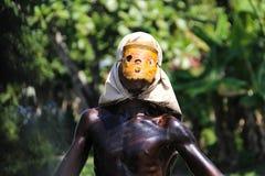 狂欢节戴假面具的人 库存图片