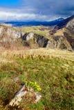 狄那里克阿尔卑斯山脉在波黑 库存图片