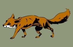 狐狸例证桔子 免版税库存图片