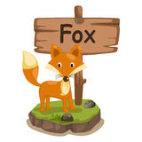 狐狸的动物字母表信件F 库存图片