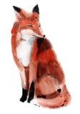 狐狸的水彩例证 皇族释放例证