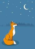 狐狸 免版税库存照片