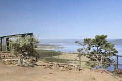 狒狒峭壁监视,肯尼亚 图库摄影