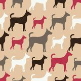 狗剪影的动物无缝的传染媒介样式 库存照片