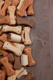 狗吃小的食物希望 图库摄影