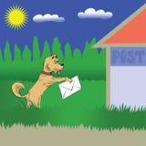 狗和信函 免版税库存图片