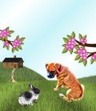 狗和兔子 免版税库存照片