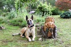狗和女孩 图库摄影