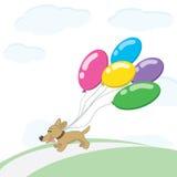 狗和气球 免版税库存图片