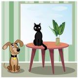 狗和猫在屋子里 免版税库存照片