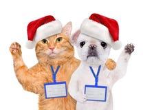 狗和猫在红色圣诞节帽子佩带空白的白色徽章大模型 库存图片