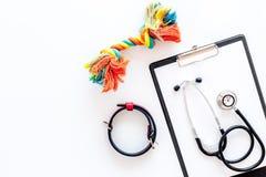 狗和猫宠物治疗的医院设备设置了与文本的听诊器白色背景顶视图空间 免版税库存照片