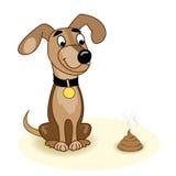 狗和粪 库存照片