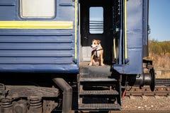 狗在一节老困厄的列车车箱坐在入口步 人员 免版税库存照片