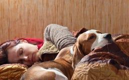 狗在与女主人的床上睡觉 免版税库存图片