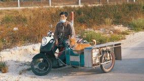 狗在泰国摩托车的拖车坐有婴儿推车的 聚会所 慢的行动 股票录像