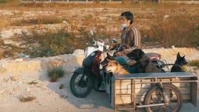 狗在泰国摩托车的拖车坐有婴儿推车的 聚会所 影视素材