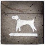狗在纽约向左转 免版税库存照片