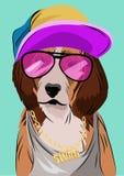 狗在Hip Hop样式,传染媒介例证装饰了 库存照片