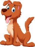 狗坐,当伸出他的舌头时 免版税库存图片