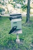 狗垃圾的塑料袋disposer 免版税库存照片
