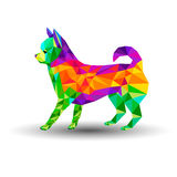 狗奇瓦瓦狗传染媒介动画片例证小狗 图库摄影