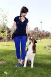 狗女孩女性训练动物宠物澳大利亚牧羊人专业教练员经理关系室外公园实践 免版税库存照片