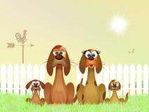 狗家庭在农场 免版税库存照片