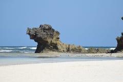 狗形状的岩石在海洋 免版税库存照片