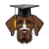 狗德国短毛指针毕业生 毕业盖帽帽子 向量 向量例证